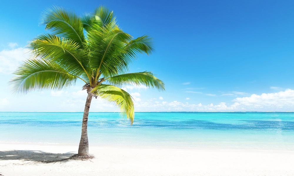 Vacances à petit prix   Transat