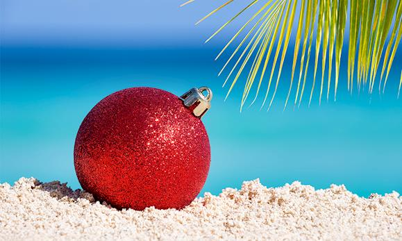 Florida Christmas Vacation Packages