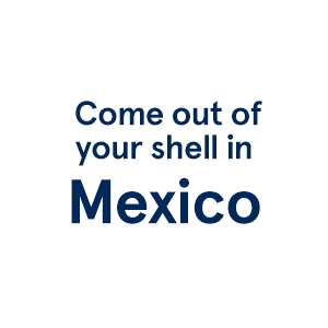 Last Minute Vacations >> Last Minute Vacations Mexico Transat
