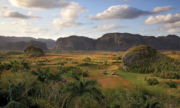 Day tour to Viñales