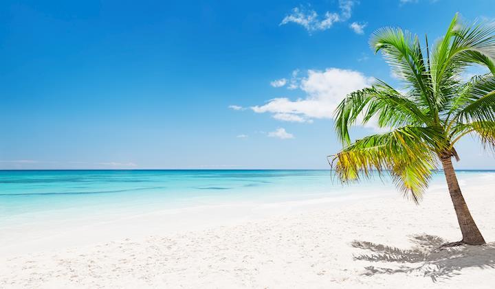 Punta Cana Resorts, All-Inclusive Hotels for fun in the sun   Transat
