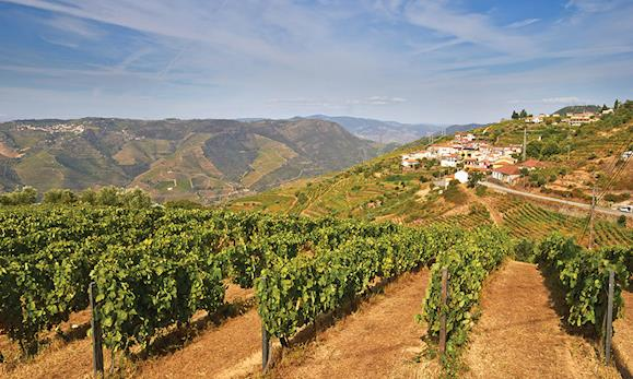 Cycling: Douro Valley